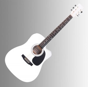 Cantabile WS-10WH